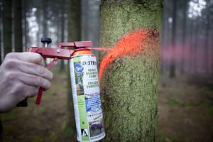 Forestry Marking Spray Neon Standard