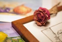 Hobby, Arts & Craft