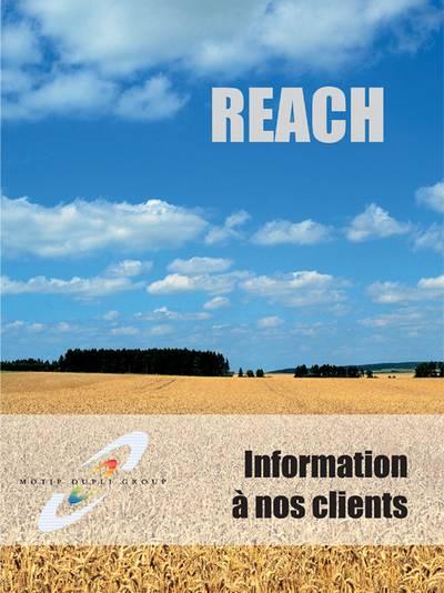 Brochure REACH