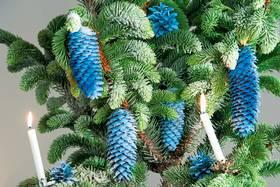 Zapfen am Weihnachtsbaum